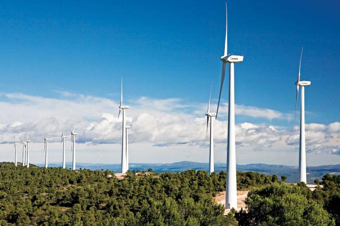 Chính phủ ban hành Quy định mới về giá điện gió tại Việt Nam. Ảnh:Thời báo Tài chính Việt Nam