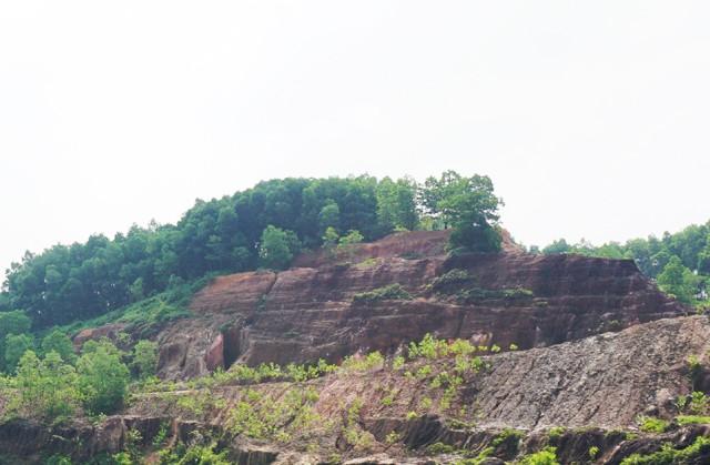 Những vạt rừng đang dần phủ xanh đồi Tỷ - nơi xảy ra những trận huyết đấu giữa các băng nhóm xã hội cát cứ tranh giành lãnh địa đá đỏ, nơi xảy ra những vụ sập hầm chôn vùi hơn 70 sinh mạng phu đá.