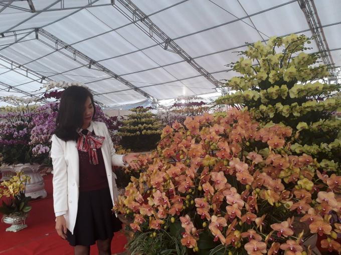 Chị Lê Anh giới thiệu một tác phẩm tạo hình hoa lan hồ điệp trên gỗ lũa trị giá hơn 30 triệu đồng.