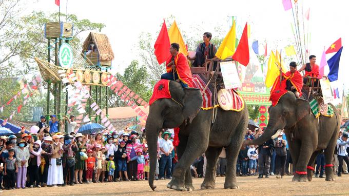 Hội voi Buôn Đôn năm 2019 có sự tham gia của 15 chú voi nhà.
