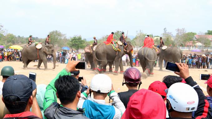 Rất nhiều du khách tranh thủ ghi lại những khoảnh khắc ấn tượng về voi, hoặc phát trực tiếp trên mạng xã hội để chia sẻ ngay cùng mọi người.