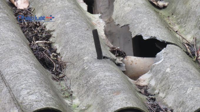Một số ngôi nhà bị vỡ mái. (ảnh: CTV)