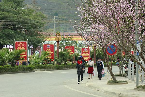 Lễ hội hoa Đào năm 2019 dự kiến sẽ được tổ chức trong 2 ngày.