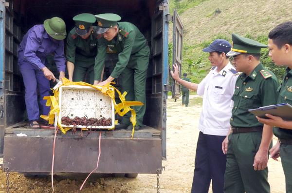 Lực lượng chức năng Lào Cai thu giữ và tiêu hủy thực phẩm không rõ nguồn gốc vận chuyển qua biên giới.