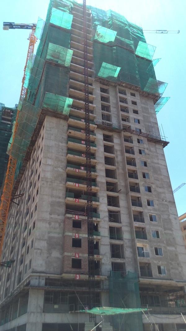 Dự án Ecolife Tây Hồ đã cất nóc vào ngày 25/6/2016 và hiện đang hoàn thiện đến tầngthứ 20 của dự án.