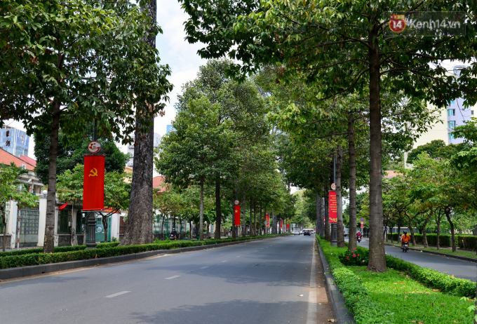Nam Kỳ Khởi Nghĩa tĩnh lặng cùng hàng cây xanh ngút tầm mắt.
