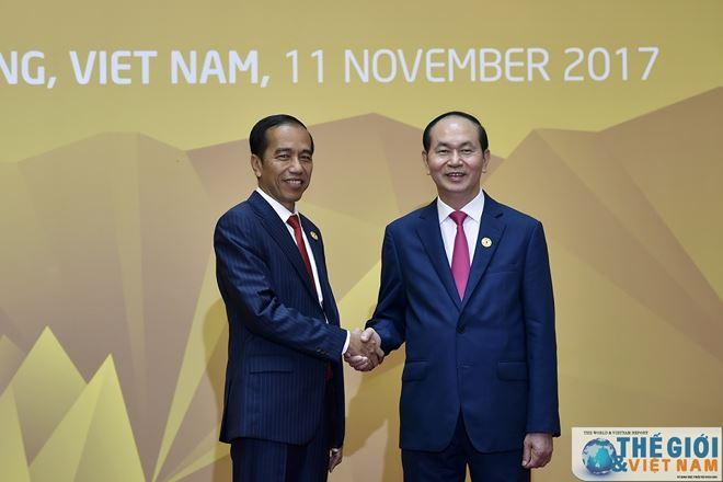 Chủ tịch nước Trần Đại Quang đón Tổng thống Indonesia Joko Widodo tại Hội nghị Thượng đỉnh APEC tổ chức tại Việt Nam, tháng 11/2017.