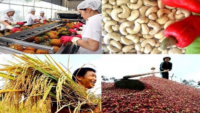 Nông nghiệp Việt Nam năm 2018 trở thành điểm sáng của nền kinh tế