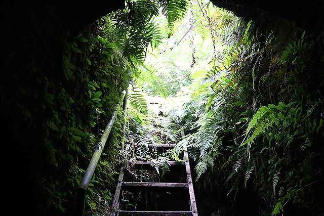 Hang ngầm nằm phía dưới lòng đất, sâu hơn 4m, có một cửa hang chính thông lên phía sau hậu cung đình Quán La. Các cụ trong làng đã làm một thang sắt để tiện cho việc lên xuống. Dưới hang có 3 ngách, theo các cụ truyền lại thì một ngách đi Hồ Tây, một ngách đi Xuân Đỉnh, một ngách đi sông Hồng. Mỗi ngách hầm rộng khoảng 1,5m, cao khoảng 1,6m.