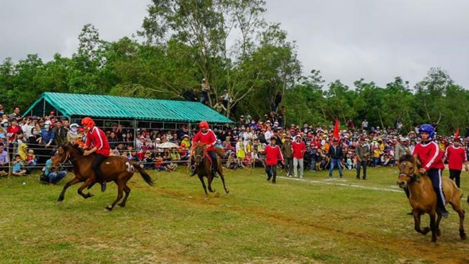 Những kỵ mã phi nước đại trên đường đua.