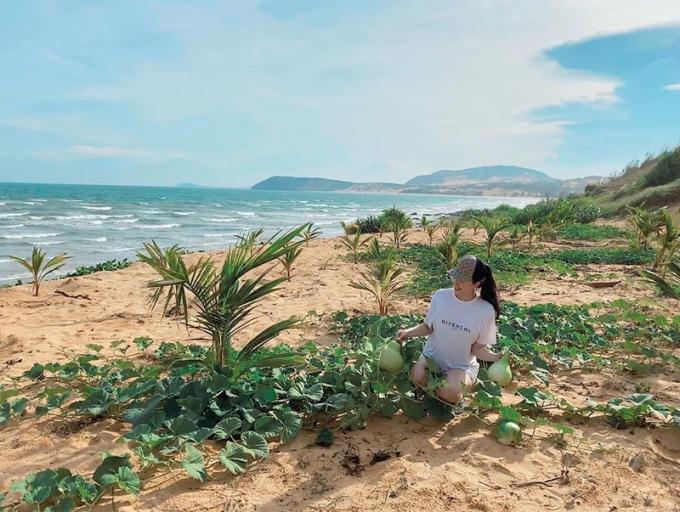 Dự án đất của gia đình cô rộng tới có thể xây được cả khu resort.