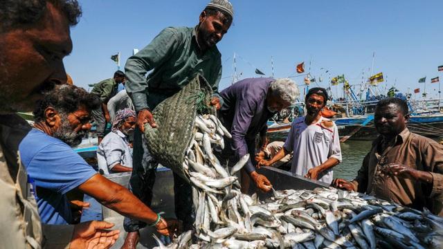 Ngư dân Pakistan (Ảnh minh họa: Reuters)