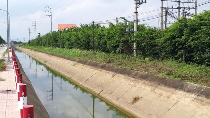 Dải cây xanh cách ly rộng 10m dài hơn 1000m của cụm công nghiệp làng nghề Dương Liễu.
