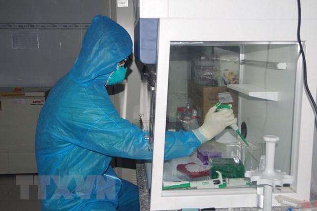 Nhân viên y tế Trung tâm Kiểm soát bệnh tật thực hiện xét nghiệm mẫu bệnh phẩm COVID-19. (Ảnh: Chanh Đa/TTXVN)