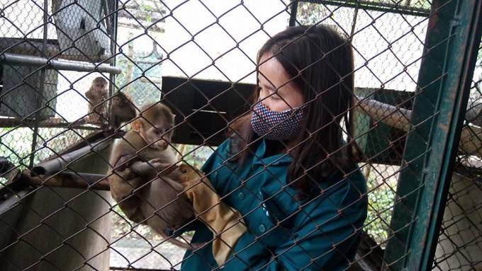 Các cá thể động vật quý hiếm được cứu hộ và chăm sóc tại Trung tâm.