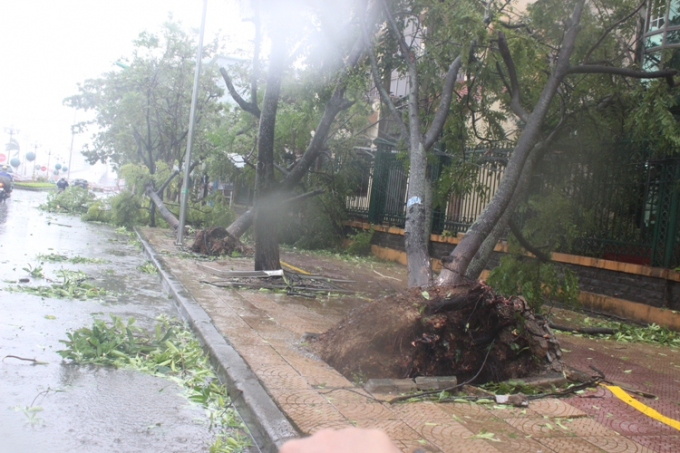 Quảng Bình: 7 người thương vong, thiệt hại gần 1.800 tỷ đồng do bão số 10