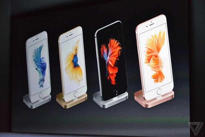 Hai sản phẩm iPhone tiếp theo được ra mắt vào ngày 9/9/2014. iPhone 6 có kích thước màn hình 4,7 inch và dày 6,9 mm. Trong khi đó iPhone 6 Plus sử dụng màn hình 5,5 inch và dày 7,1 mm.