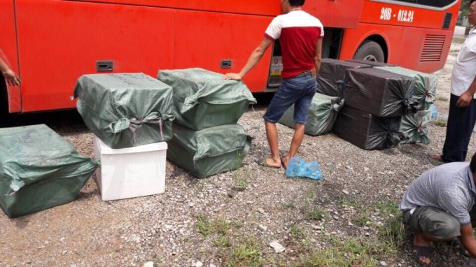 Nghệ An: Bắt giữ hàng nghìn bao thuốc lá lậu và hàng tấn Nhộng ngâm hóa chất