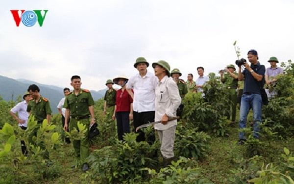 Theo phản ánh của người dân địa phương, rừng ở khu vực này bị chặt phá đã nhiều năm nhưng không bị chính quyền ngăn cản.