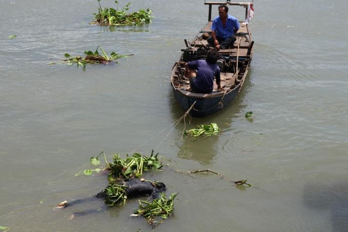 Thi thể nam thanh niên trôi sông Đồng Nai.