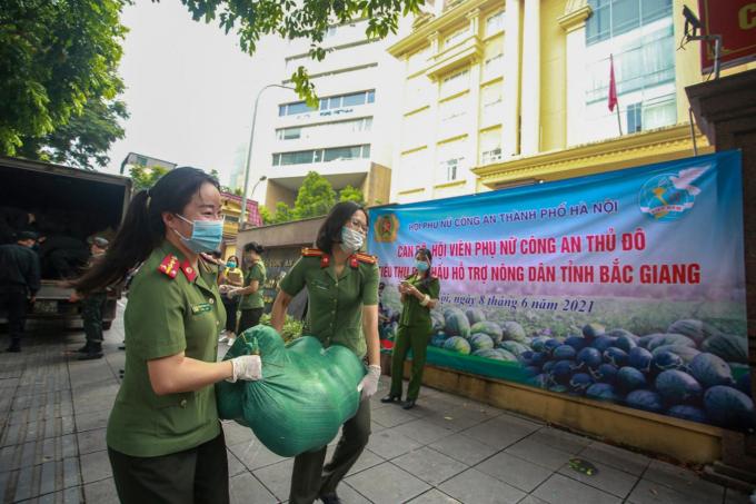 13 tấn dưa được bán tại 29 Phan Chu Trinh, quận Hoàn Kiếm, TP Hà Nội.