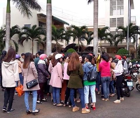 Hơn 500 giáo viên hợp đồng tại huyện Krông Pắk sắp mất việc (ảnh: facebook)