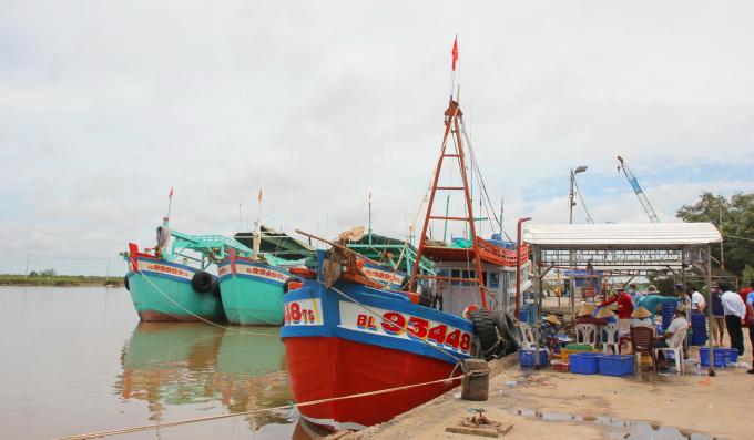 Bến cảng Gành Hào đón tàu khoảng 5.000 tấn, phục vụ phát triển kinh tế - xã hội tỉnh Bạc Liêu.
