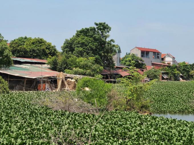 Diện tích hồ tại thôn Trung thuộc thị trấn Yên Lạc đang bị chiếm dụng làm nhà xưởng.
