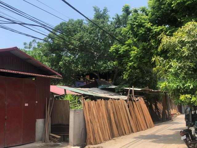 lan-chiem-dat-tt-yen-lac3-1628068097