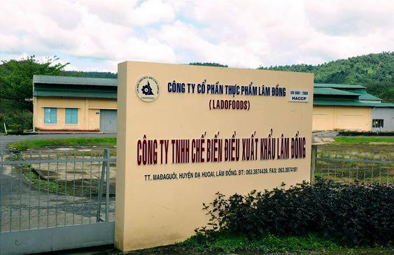 Công ty Tinh chế biến điều xuất khẩu Lâm Đồng.
