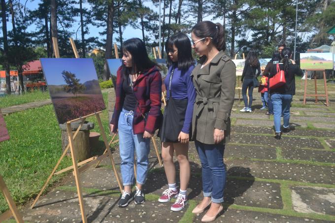 Du khách dẫn nhau đến để ngắm tranh.