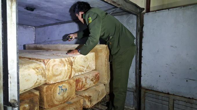 Số lượng gỗ mà cơ quan chức phát hiện và bắt giữ.