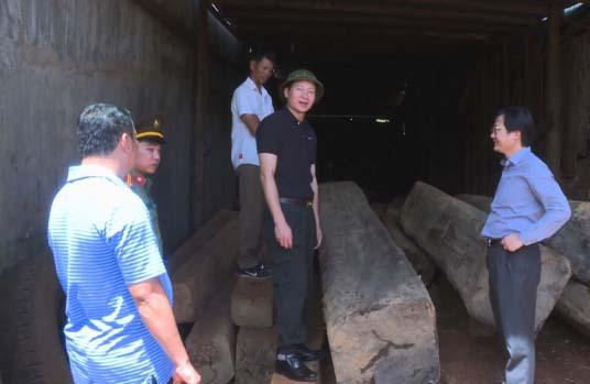 Cơ quan chức năng phát hiện số lượng gỗ không rõ nguồn gốc.