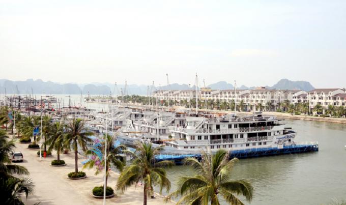 Cảng tàu Quốc tế Tuần Châu nơi xảy ra sự việc.