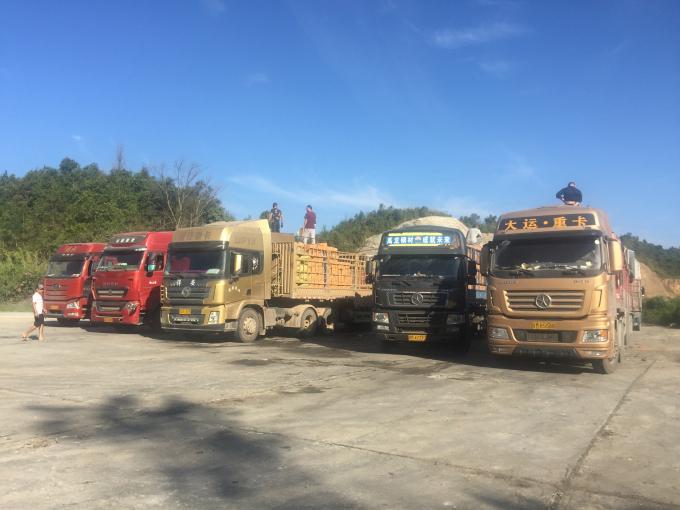 Hoạt động bốc xếp hàng hóa tại các bến bãi tập kết hàng hóa thuộc khu vực cửa khẩu Tây Trang.