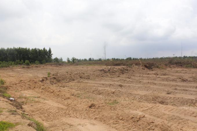 Khoảng 200m2 đất của gia đình ông Thảo bị san lấp mặc dù gia đình ông đang khiếu nại.