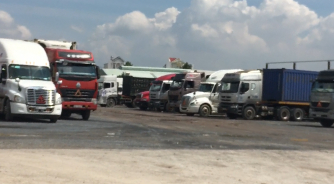 Tại khu vực bãi xe Thái Tuấn luôn có hàng trăm xe tải cỡ lớn, xe container các loại neo đậu.
