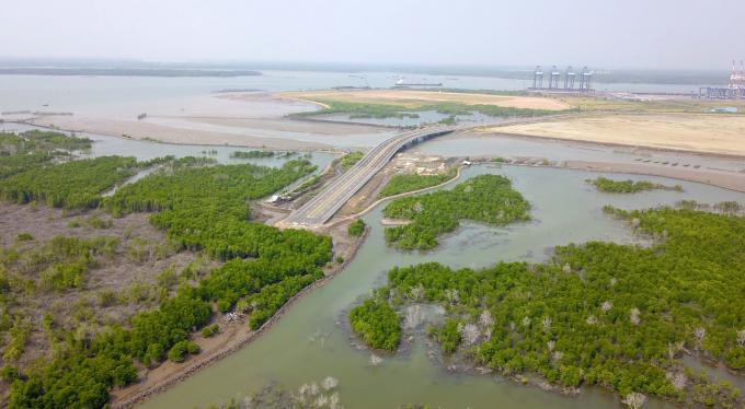 Việc thu hồi dự ánCảng tổng hợp và Container Cái Mép Hạ là chưa phù hợp Luật Đất đai.