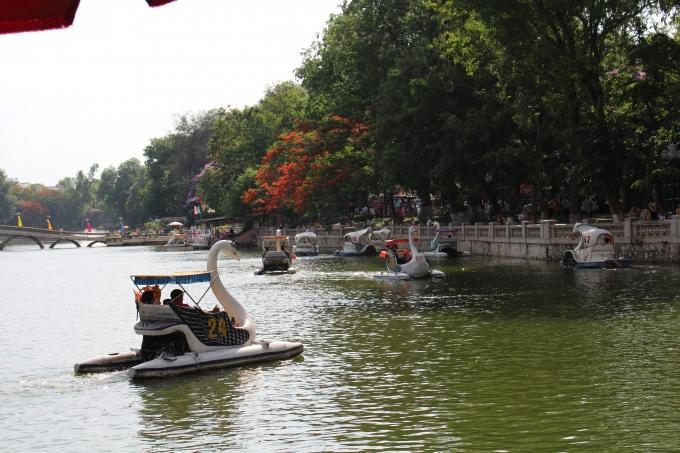 Máy đạp nước trong công viên Thủ Lệ hút khách trong những ngày nắng nóng.