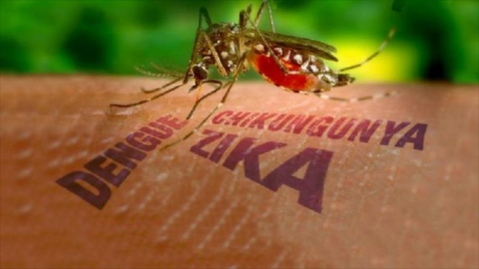 Virut ZiKa có tốc độ lan truyền rất nhanh. (Ảnh minh họa)