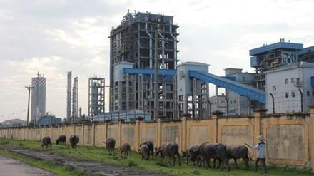 Dự án Nhà máy đạm Ninh Bìnhliên tục thua lỗ với số tiền trên 2.500 tỷ đồng
