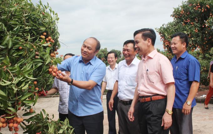 Ông Nguyễn Văn Linh - Chủ tịch UBND tỉnh Bắc Giang (áo xanh bên trái)