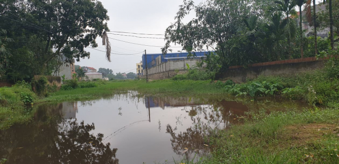Sình lầy và rậm rạp, đó là tuyến đường thực tại của người dân tổ dân phố Đại Phong đang được thụ hưởng. Ảnh Chí Kiên.