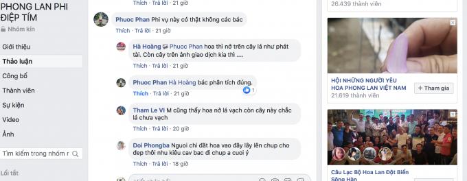 Phonglan1