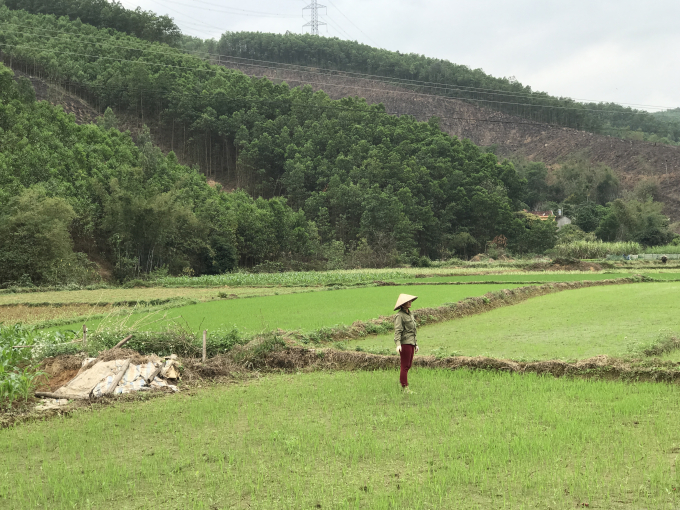 Người dân không còn lo lắng bị sạt lở mỗi khi mùa mưa tới.