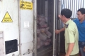 Đồng Nai: Phát hiện lượng lớn thịt nhiễm dịch tả lợn Châu Phi