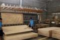 Bộ Tài chính thành lập đoàn kiểm tra xác minh có hay không việc gỗ ván ghép ùn ứ tại cảng vì bị áp thuế 25%