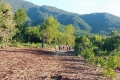 Tìm thấy thi thể cụ bà 83 tuổi sau nửa tháng đi lạc trên núi cao