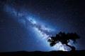 Đã tìm ra cách chế tạo điện từ... bóng đêm