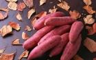 Những loại rau, quả Việt Nam giúp giải nhiệt cực tốt cho ngày nắng nóng